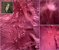 مسبار ناسا يلتقط سلسلة من الصور المذهلة لسطح المريخ
