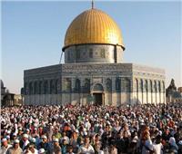 الخارجية الأردنية: الإدارة الأمريكية أبدت بوادر إيجابية حول القضية الفلسطينية