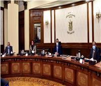 الحكومة: بدء تسجيل المواطنين الراغبين في تلقي لقاح «كورونا» خلال أيام