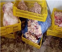ضبط 9 أطنان مصنعات دواجن وكبدة ولحوم مجمدة غير صالحة للاستخدام بالجيزة