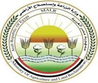 «الزراعة»: معاينة 1077 مزرعة للتأكد من تطبيق الأمان الحيوي خلال شهر