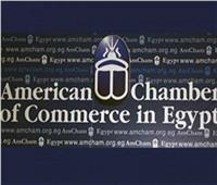 غرفة التجارة الأمريكية: لدينا أجندة لتشجيع الاستثمار في الطاقة بمصر