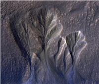 ماء سائل بجليد المريخ ودلائل على وجود حياة| فيديو