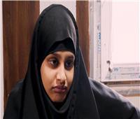«عروس داعش» ممنوعة من العودة.. المحكمة البريطانية العليا ترفض عودة شاميما بيجوم