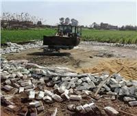 إزالة 13 حالة تعد على الأراضي الزراعية بالمنوفية.. صور