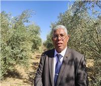 نائب جنوب سيناء: زيارة وزير الزراعة وضعت حلول لمشاكل المزارعين والصيادين
