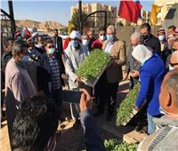لليوم الثالث.. وزير الزراعة يواصل جولاته على المشاريع الزراعية بجنوب سيناء