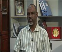 مدير خزان الروصيرص السوداني يحذر من الآثار السلبية لسد النهضة