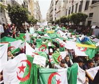 فى ذكرى الحراك الشعبى.. الجزائر بين «شقى الرحى»