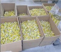 ضبط مصنع لإنتاج «السكر الدايت» بـ4 أطنان مجهولة المصدر| صور