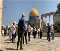بعد دعوات اقتحام «كرنفالي».. مستوطنون إسرائيليون يقتحمون المسجد الأقصى