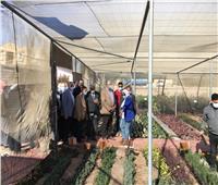 12 معلومة عن زيارة وزير الزراعة لـ «جنوب سيناء»
