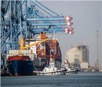 تداول 29 سفينة للحاويات والبضائع العامة بميناء دمياط
