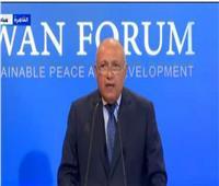 وزير الخارجية: مصر تؤمن بأهمية العمل الإفريقي المشترك
