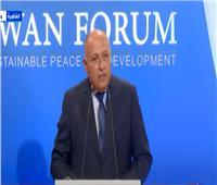وزير الخارجية: مصر تبذل جهودًا حثيثة لتحقيق السلام في إفريقيا| فيديو
