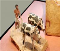 معلومات عن طرق «الزراعة» من مقابر عظماء القوم في مصر القديمة