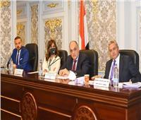 نبيلة مكرم تستعرض جهود وزارة الهجرة في اجتماع لجنة المشروعات الصغيرة بمجلس النواب