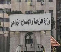 الجريدة الرسمية تنشر قرار الجمعية العموميةلـ«منتجي القطن»