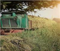 رحلة من القرن الـ19.. قطار «الديكوفيل» المحمل بالقصب يمر ببيوت المنيا| صور