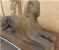 نقل تمثال شبيه أبو الهول لمتحف الإسماعيلية
