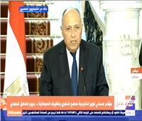 وزير الخارجية: هناك مجال واسع للعمل المشترك بين مصر والسودان