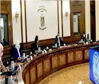 رئيس الوزراء يناقش تأسيس صندوق حكومي لتأمين وتنمية الأسرة المصرية