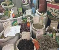 ضبط مخزن أعشاب غير صالحة قبل طرحها بالأسواق في الجيزة
