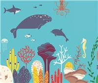 الأمم المتحدة تكشف أهمية حماية الأحياء البرية في الحفاظ على البيئة