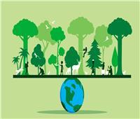 «البيئة»: اليوم العالمي للحياة البرية يسلط الضوء على التهديدات والمخاطر