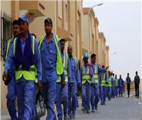 بسبب ضحايا العمال الأجانب.. هولندا تقاطع قطر تجاريا | فيديو