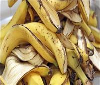 «تغذية الشعر وتنظيف الأسنان».. فوائد كبيرة من تجفيف قشر الموز