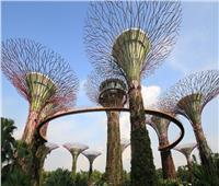 محللون: خطة الصين الخمسية للتنمية تعتمد على التكنولوجيا الخضراء