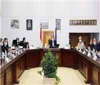 «حسن علام».. التحالف الفائز بتقديم وتشغيل الخدمات بالمتحف الكبير