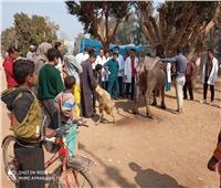 جامعة سوهاج تطلق قافلة بيطرية لقرية «الأحايوه» وتعالج 821 حالة