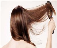 6 وصفات لتطويل الشعر.. أبرزها «البيض»