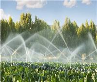 الحكومة تنفي بيع مياه الري للمزارعين