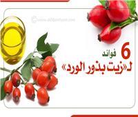 إنفوجراف| «كنز لجمال البشرة».. 6 فوائد لـ«زيت بذور الورد»
