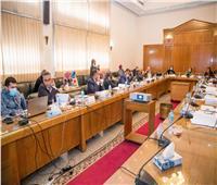 ياسمين فؤاد: ضرورة مراعاة الأبعاد البيئية في المشروعات القومية