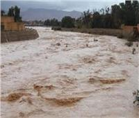 مصرع 6 أشخاص بينهم نساء وأطفال في فيضانات غرب الجزائر.. فيديو