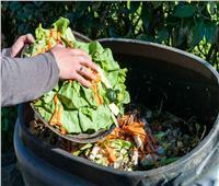 تقرير أممي:900 مليون طن من الطعام تلقى في صناديق القمامة سنويا