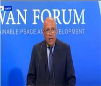 وزير الخارجية: مصر تُتابع الإجراءات المتخذة على مستوى لجنة الحوار الليبية