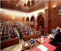 حنان أبوالعزم رئيسا للجنة الصناعة بمجلس الشيوخ