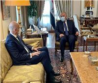 شكري: مصر تتطلع لسرعة تدشين التعاون مع اليونان في مجال الطاقة
