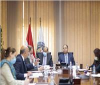 وزير المالية: البنوك تمول مبادرة إحلال السيارات بأقساط على 10 سنوات