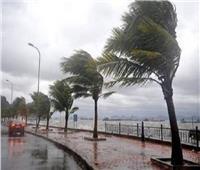 خطوات مهمة لقيادة آمنة في الرياح المحملة بالأتربة