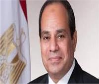«محلية النواب»: لدينا رئيس مخلص وجاد في عمله