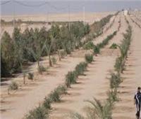 اعتماد تخطيط أرض بالحزام الأخضر بـ6 أكتوبر لإقامة نشاط عمراني