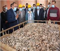 6 معلومات عن أكبر خلية دفن للمخلفات الخطرة بمصر