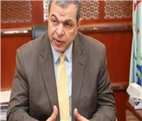 «سعفان»: الدولة المصرية ظهير قوي للعاملين بالخارج