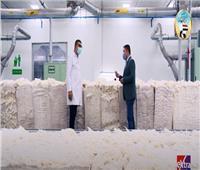 مدير مصنع الغزل الرفيع: نستخدم أفضل أنواع القطن في العالم.. فيديو